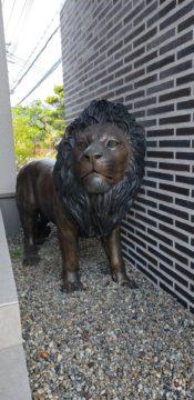 ライオンとフレンチブルドッグに監視されながら。。。。。w