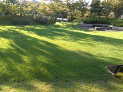置物が配置されたお庭。